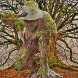remixed photography manipulation trees surreal fantasy branches carving freetoedit