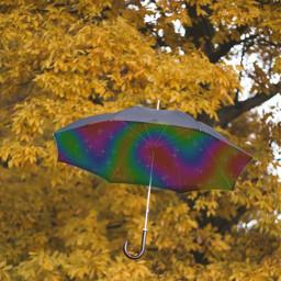 rainbow ircundertheumbrella undertheumbrella freetoedit
