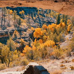 caves cliffdwellings cliffs wilderness gilanationalforest forest protectedwilderness autumn nature naturelover october2020 myphotography