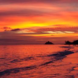 freetoedit kailua hawaii sunrise paradise tropical ocean beach sea island sun
