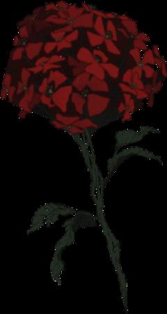 tpn thepromisedneverland thepromisedneverlandflower connie mmmnuggies thistookawhiletodo red redaesthetic halloween flowerfromtpn norman normanthepromisedneverland conniethepromisedneverland redflowertpn redbloodflower emma raythepromisedneverland thepromisedneverlandbloodflower plzuseitbih christmasflower flower redflower deathflower death emo freetoedit