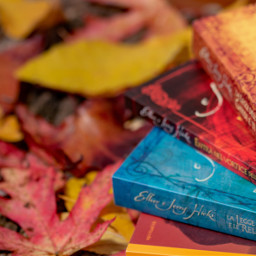 freetoedit photography autumn fall leaves pcmyfavoritebook