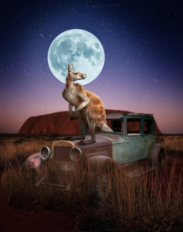 #känguru #auto #oldcar #car #ayersrock #australia  #australien #mond #moon
