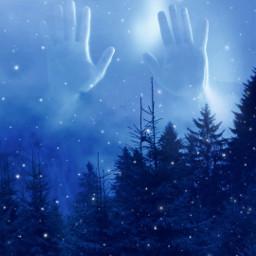 mastershoutout surreal forest photomanipulation curvestool snowing brusheffect blue scary madewithpicsart freetoedit
