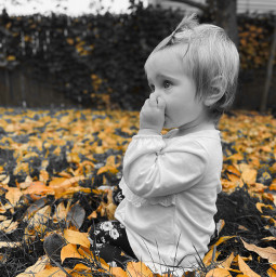 freetoedit baby autumn autumncolors leaveschanging