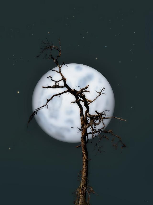 #october #background #bluemoon #fullmoon #moon #night #oldtree #old #tree #dead #deadtree #emotions #madewithpicsart #picsart #freetoedit  ~🖤~