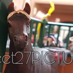horse schleich picture modelhorse riding cute stable stall mustang freetoedit