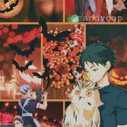 haikyuu akaashibokuto halloween haikyuuwallpaper halloweenhaikyuu boo owlbokuto bokuto bokutohaikyuu bokutohaikyuuaesthetic freetoedit