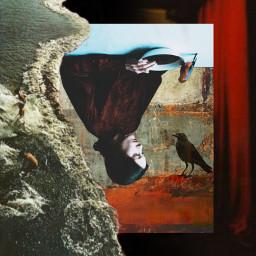 abstract mystyle babelart art photography girl birds raven stillness moments upsidedown inthesnow darkart sadness freetoedit