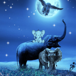 myimagination elephants animallover freetoedit