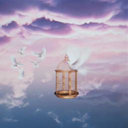 pigeon pigeons cage goldencage clouds purple background backgrounds freetoedit