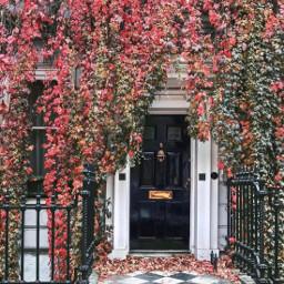 autumninthecity urbanexploration exploringthecitystreets house frontwall freetoedit