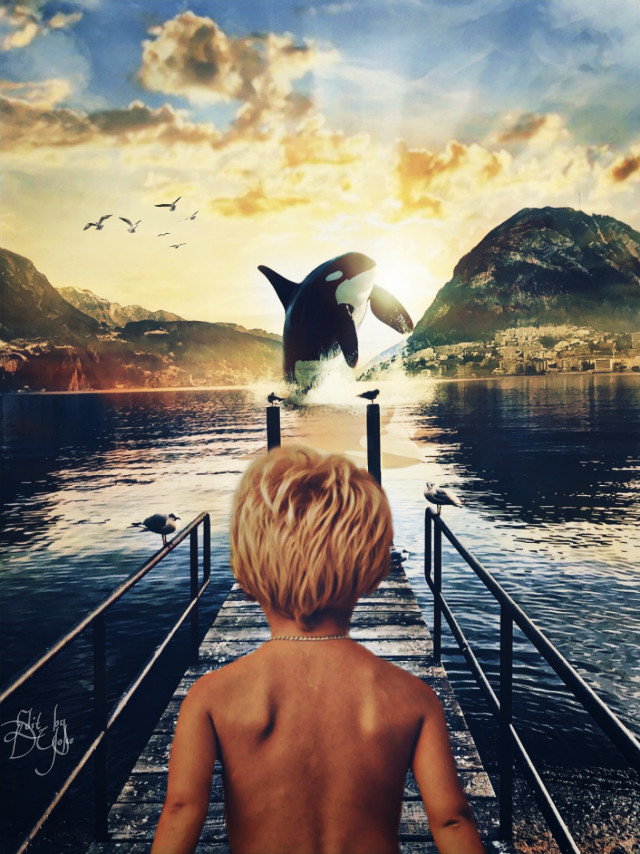 #mastershoutout to @sharknstuff, #photoremix, #photoediting,  #pier, #nature, #whale,#oceanlife, #view, #dawn, #fxeffects, #fxtools, #lensflare