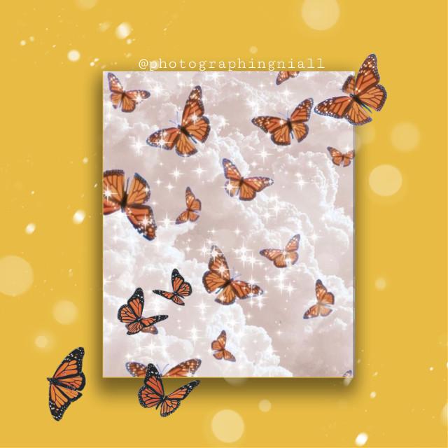 #butterfly #butterflyaesthetic #butterflyedit   A cute butterfly edit! ♡
