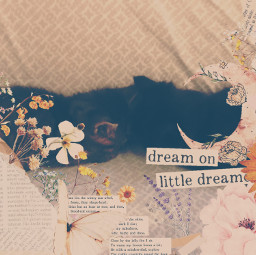 vintage asthetic vintageaesthetic flowers words quotes rips rip cuttout cut moon flowery kittens cat kitties couch pattern freetoedit srcvintageaesthetic