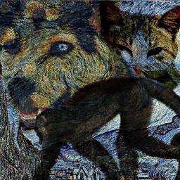 freetoedit animals monkey dog cat