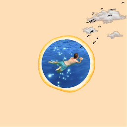 orange swimming man bird freetoedit