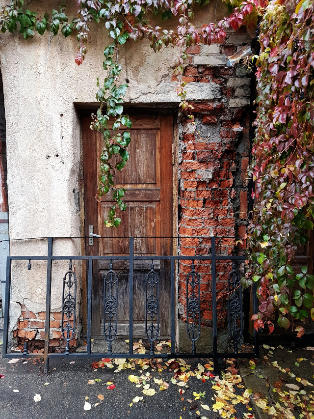 #autumn #autumncolors #oldhouse #doors #background  #freetoedit