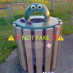 notfake googlyeyes freetoedit