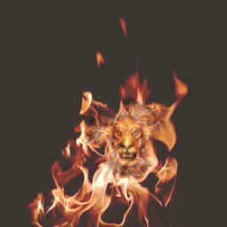 fire lion freetoedit