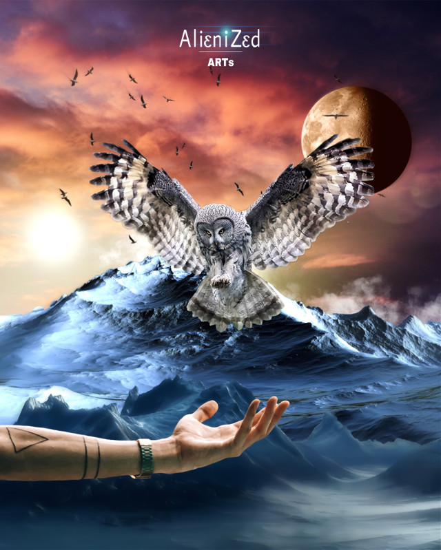 Have a nice Saturday planet 👋🏻👽👉🏻☕️🍪🍩@PA 😊   #freetoedit #nature #owl #hand #birds #mountain #colorfull #fantasy #winter #moon #alienized #wallpaper #uhd #editedwithpicsart