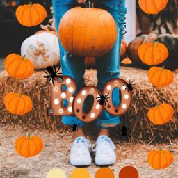 halloween freetoedit fall pumpkin vibes fallvibes boo replay beautiful