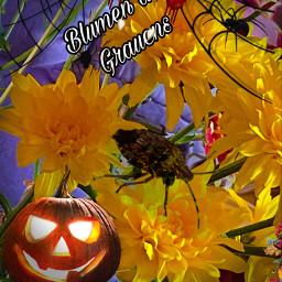 silvisumm gruselblumen freetoedit fchappyhalloween2020 happyhalloween2020
