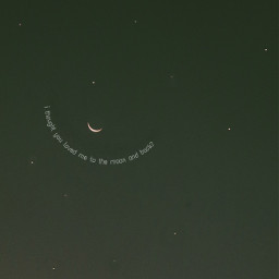 love moon text freetoedit