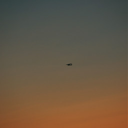 sunrise sonnenuntergang photography nature naturephotography colorful orange love interesting autumn freetoedit flugzeug airplane wallaper