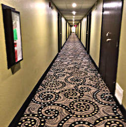 hotel freetoedit