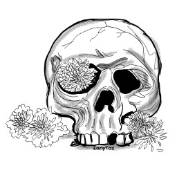 skull drawing outline outlineart sketch remixme colorme freetoedit