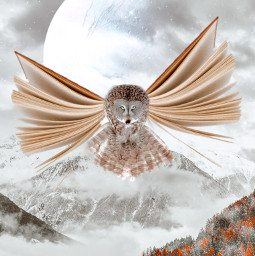montain flying picsart art myedit birds skylovers planets freetoedit flyingbooks