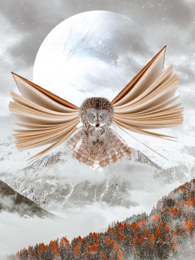 ✧  Flying Books 📚 Libros Voladores✧   ✧  Most of the people who cross our path, it is only while they fulfill their purpose, then they continue on their way.✧  * Freetoedit * Awesome *  ✧  Op by Pexels  ✧  Sticker owl from pixabay  ✧  Other account @egildes_zamora   #montain #flying #picsart #art #myedit #birds #skylovers #planets