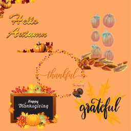 thanksgiving interesting turkeyday november26th givethanks freetoedit