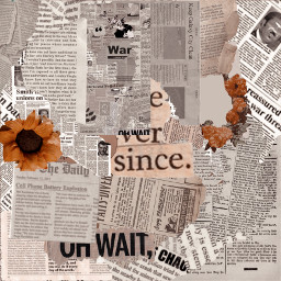 newspaper wallpaper background collage brown white flowers newspaperaesthetic newspaperbackground freetouse freetoedit