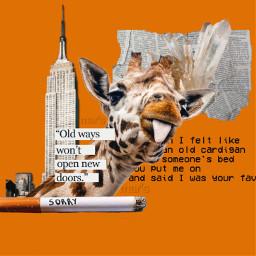 magazine love letters newspaper frases amor college paper vintage quotes stamp cassette giraffe realpeople tattoo polaroid polaroidframe frame cigarette diamond empirestate aesthetic bts addisonrae charlidamelio freetoedit