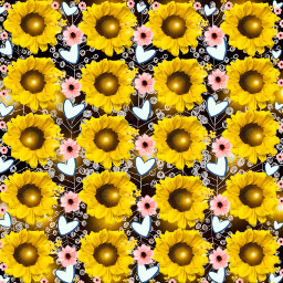 summer sunflowersgalore freetoedit ecpatternmaking patternmaking