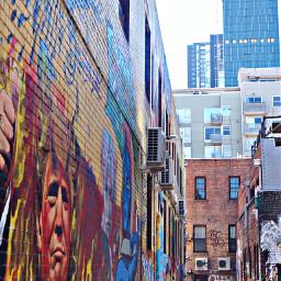 freetoedit alley building mural donaldtrump aussie australia buildings wall city urban art travel photography summer pcbuildingsisee buildingsisee