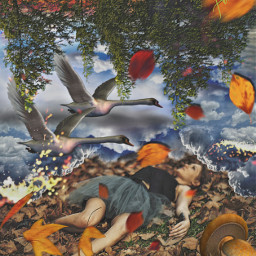 daydream girl laying forest leaves mushrooms swans upsidedown op freetoedit