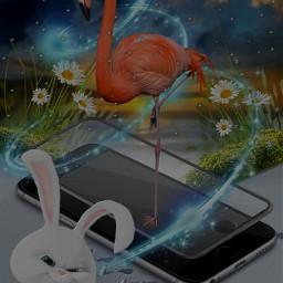 winterwonderland rabbit flamingo snow handy daisyflower bluelight freetoedit