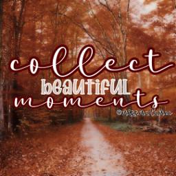 autumn monday mondaymotivation mondaymornings motivationalquotes freetoedit