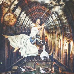 swing swinginggirl swan ducks swallow puddle museum watches op freetoedit