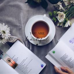 book books flower flowers tea ircdandelionsilhouette freetoedit