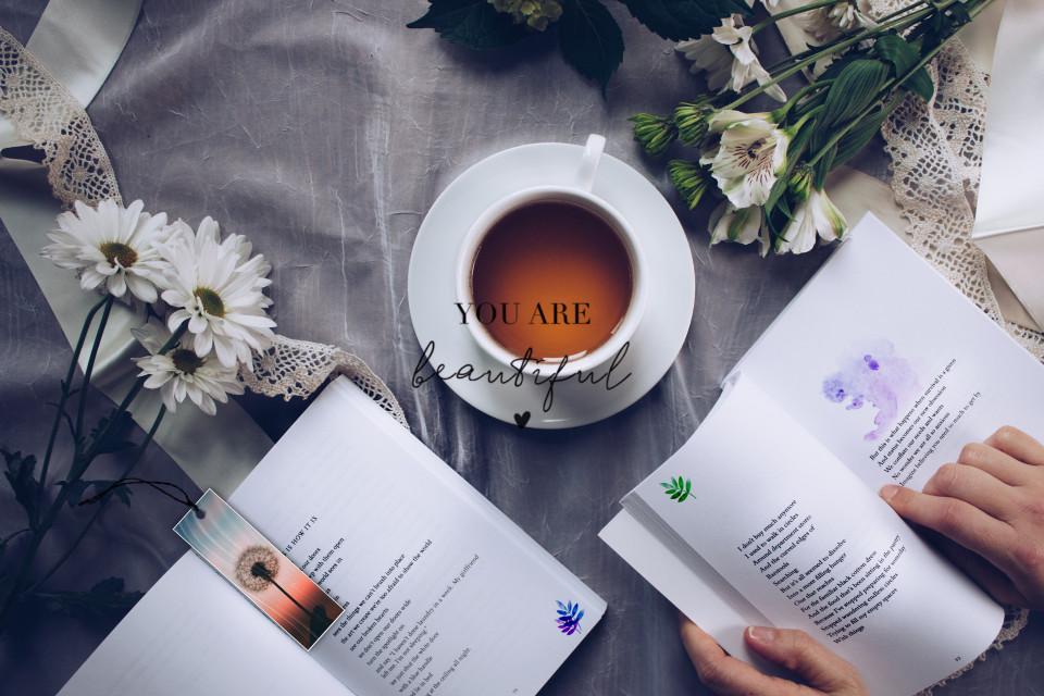 📖https://picsart.com/i/343321066000201?challenge_id=5fa91ab1f40f0a003ebb437b📖  Thanks🌙  #book #books #flower #flowers #tea #te #libro #libri #fiore #fiori #freetoedit #ircdandelionsilhouette #dandelionsilhouette