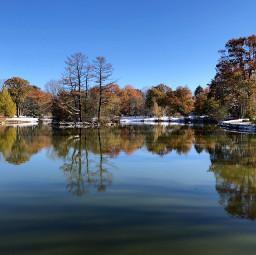 freetoedit reflection lake nature landscape shadows snow fall autumn seasons