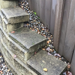 freetoedit rocks