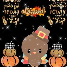 thanksgiving blessed grateful turkeyday freetoedit