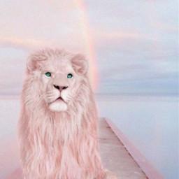 walkway dock bridge pink sea water sky pastelcolors background skybackground lion freetoedit