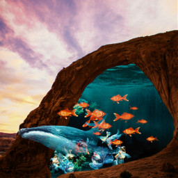 picsart moon freetoedit fish desert underwater whale water ocean sea surreal