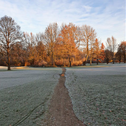 freetoedit remixit remixme landscape nature autumn fall sunrise munich morning frosty cold
